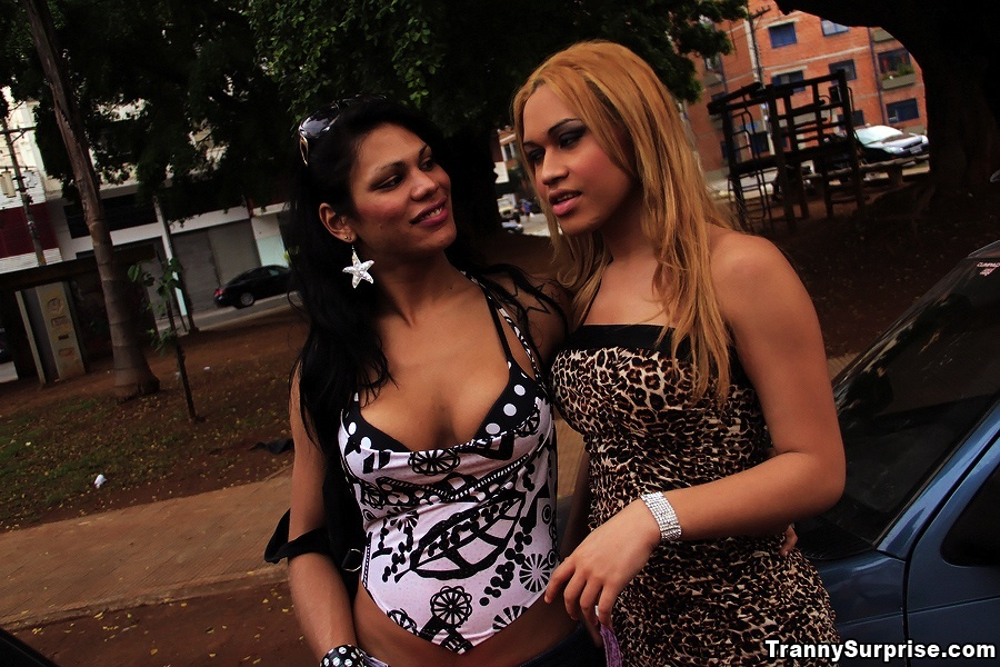 2 Super Sensual Trannys Get Their Marvelous Brazilian Bodies Fucke