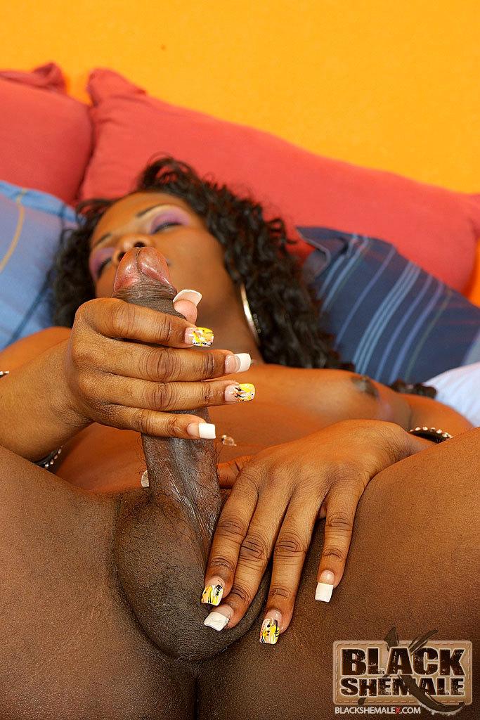 Massive Dick Yummy Black T-Girl Brooke